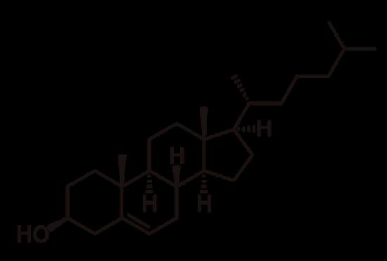 図 1 コレステロールの構造式